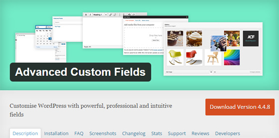 Плагин Advanced Custom Fields