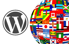 Перевод wordpress