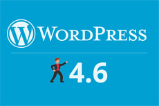 Wordpress 4.6