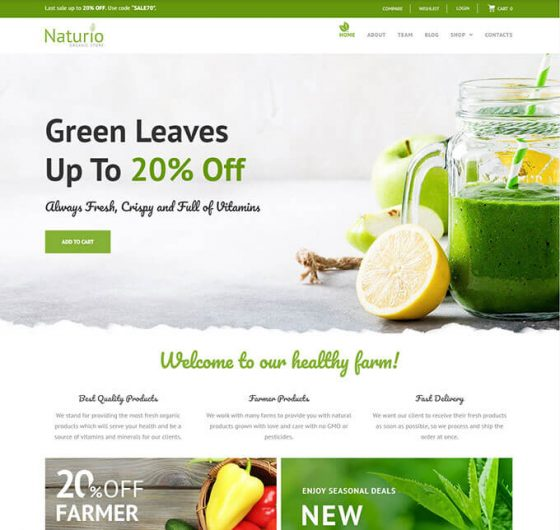 Naturio Food Store Template Elementor