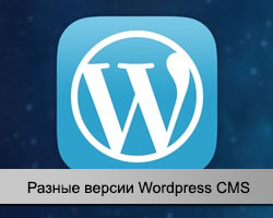 Wordpress версии