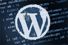 Wordpress разработка